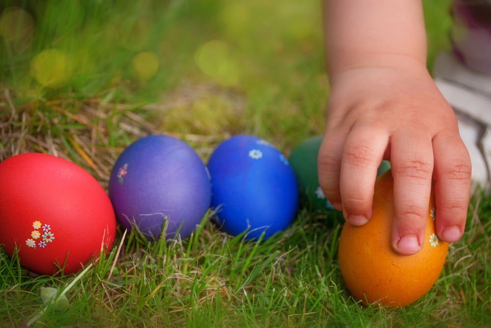 Easter-Egg-Hunt-photo