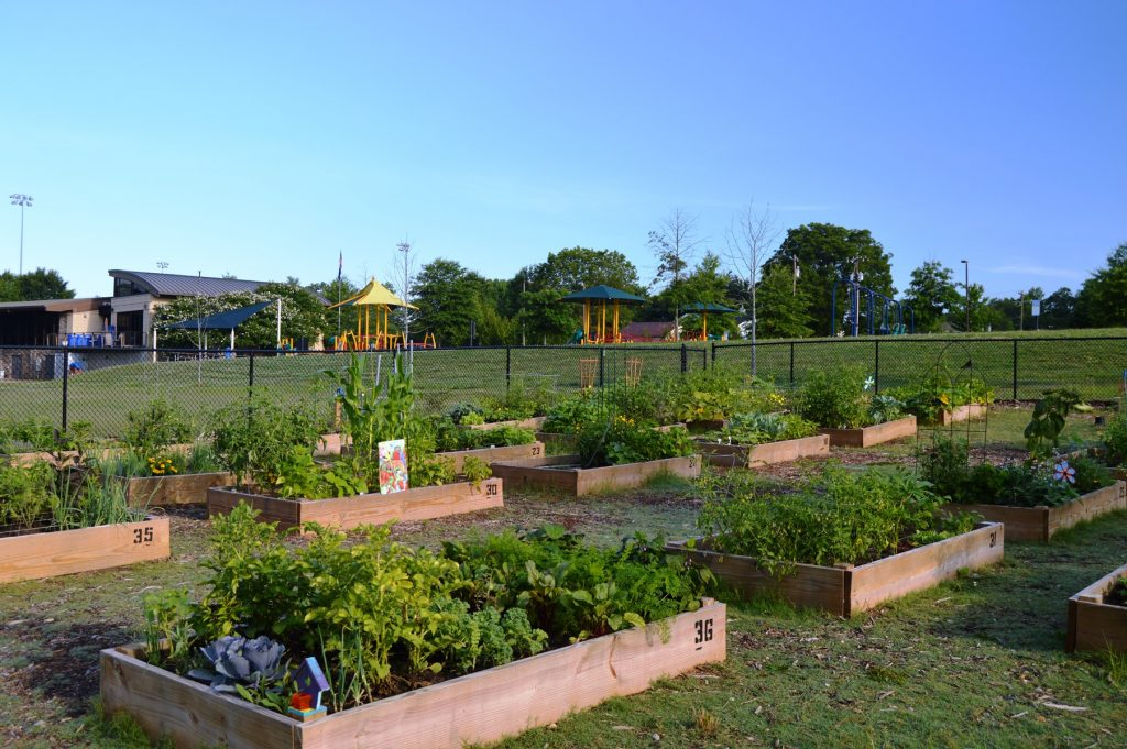 View of Pavilion Community Garden