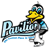 pavilion ice skating logo