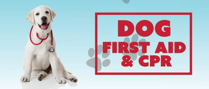 Dog CPR Event Header-10