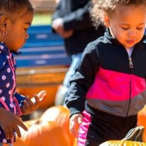 Freetown Fall Festival @ Freetown Community Center   Greenville   South Carolina   United States